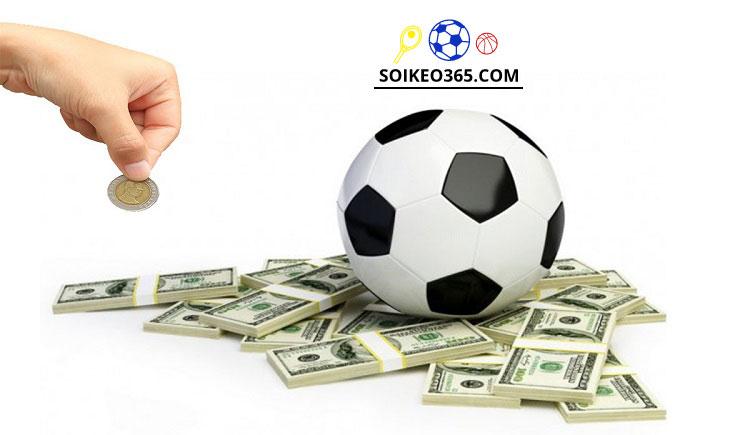 Cách soi kèo bóng đá trực tuyến