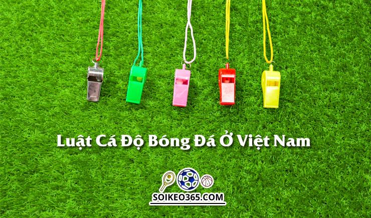 Luật cá độ bóng đá ở Việt Nam