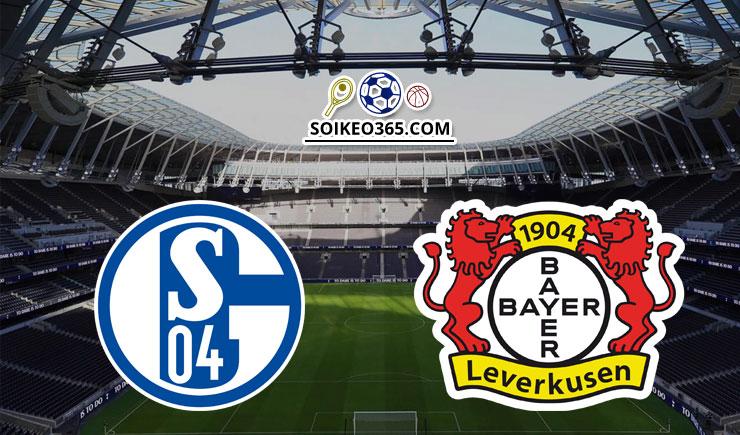 Soi kèo Schalke 04 vs Bayer Leverkusen