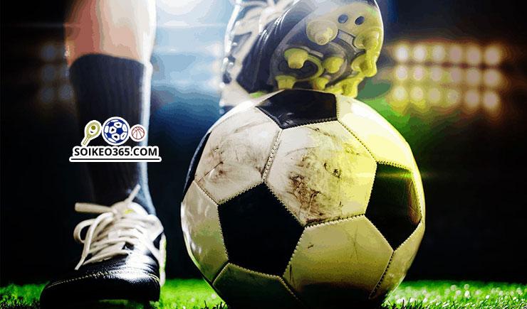 Cách soi kèo rung bóng đá
