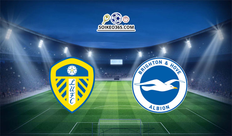 Soi kèo Leeds United vs Brighton