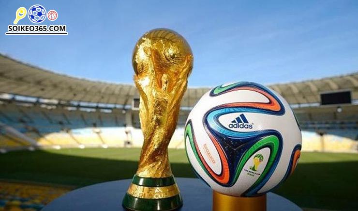 Giải World Cup là gì? Những thông tin chi tiết về giải đấu này